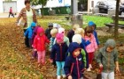 Oktober pri Zajčkih