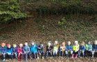Otroci oddelka Metulji raziskujemo gozdove